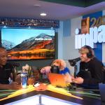 VIDEO: Mike Tyson kertoi rehellisen veikkauksen Floyd vs Logan -ottelusta | Urheiluvedot.com